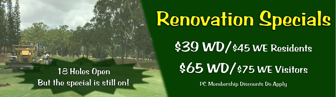 Renovation_Special_18_Banner